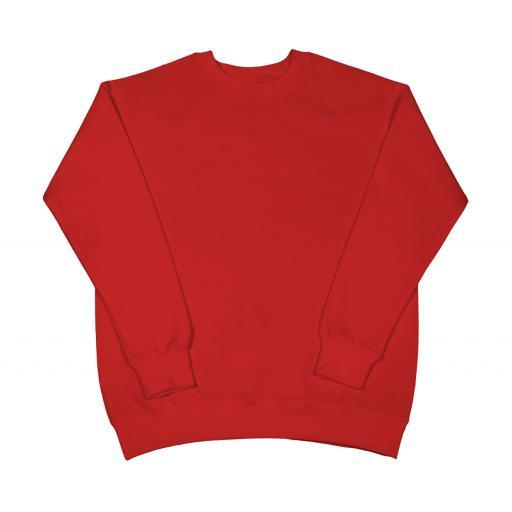 Ladies' Raglan Sleeve Sweatshirt