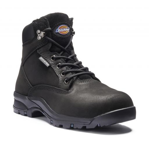 Dickies Corbett Womens Safety Boot