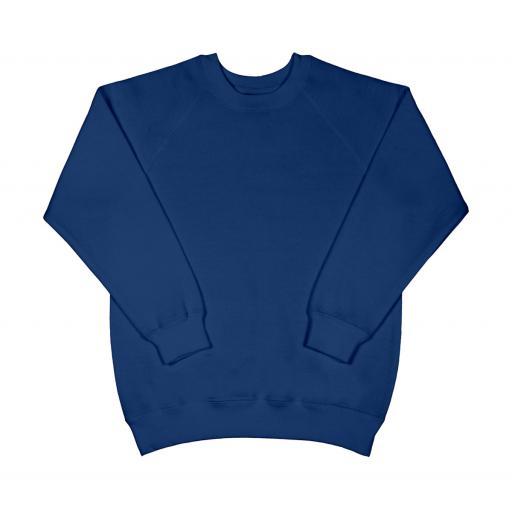 Kid's Raglan Sleeve Sweatshirt