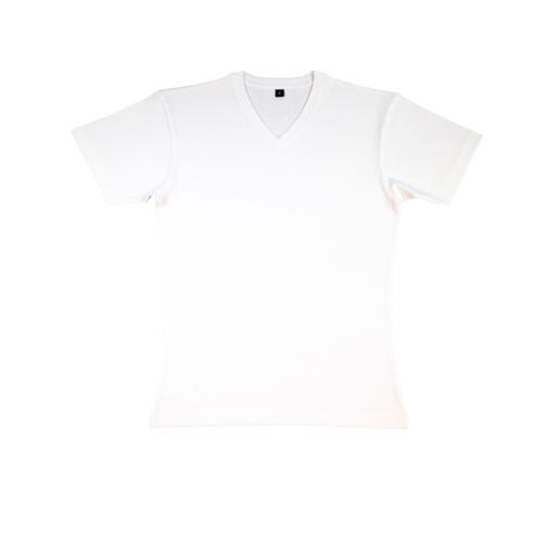 Men's 'James' Organic V-Neck T-Shirt