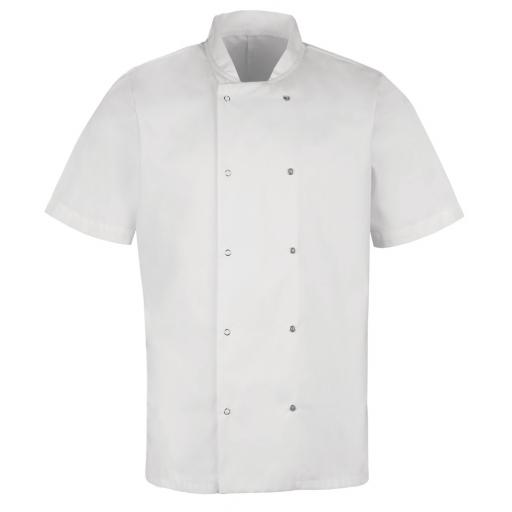 S/Sleeve Stud Fastening Chef's Jacket