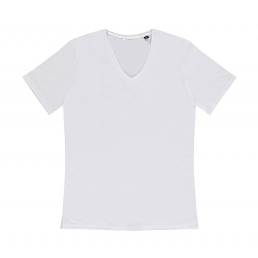 Mens 'Anthony' Fitted V Neck Tee