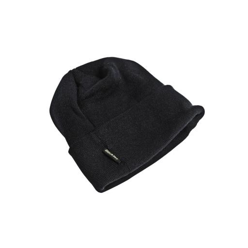 Thinsulate Watch Cap
