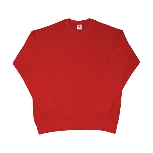 Men's Raglan Sleeve Sweatshirt