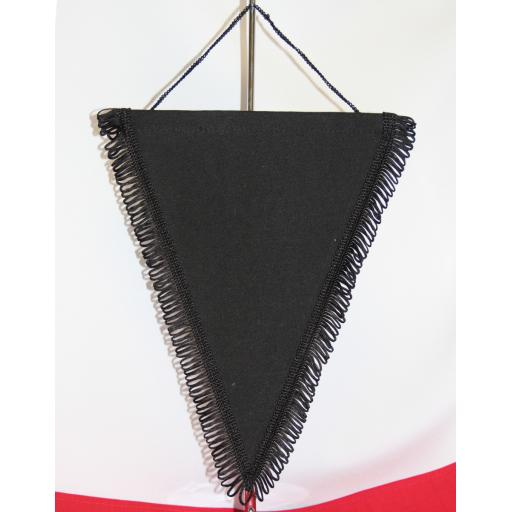 Triangular Pennant (10pk)