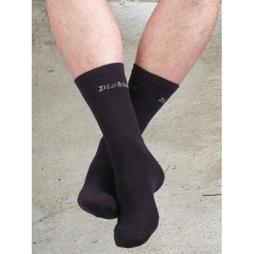 Thermo Sock (2 Pack)