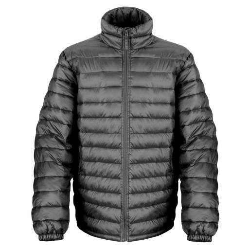 Men's Ice Bird Padded Jacket