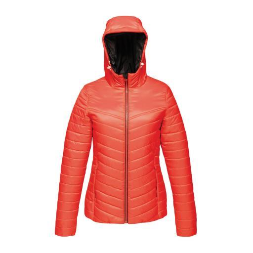 Acadia II Women's Warmloft Down-Touch Jacket