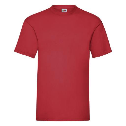 Men's Valueweight T-Shirt